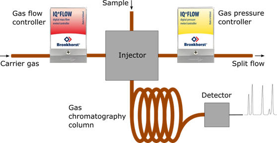 Flow Scheme of Gas Chromatography